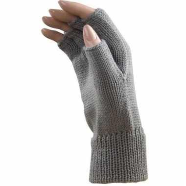 Carnaval vingerloze handschoenen licht grijs volwassenen carnavalskle