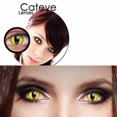 Carnavalskleding halloween party lenzen gele katten ogen roosendaal
