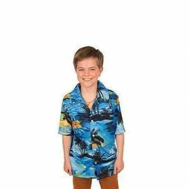 Hawaii blouse/overhemd blauw jongens carnavalskleding roosendaal