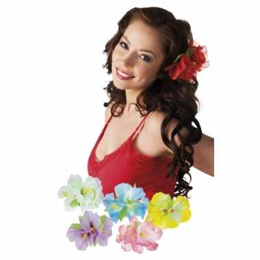 X stuks hawaii haarbloemen clip carnavalskleding roosendaal
