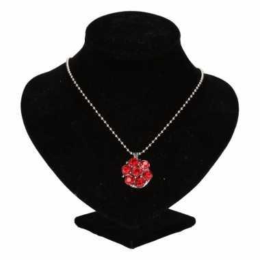 Zilveren prinsessen medaillon rode bloem volwassenen carnavalskleding