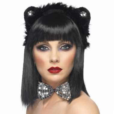 Katten verkleed carnavalskleding roosendaal