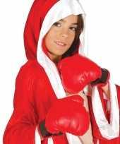 Carnavalskleding bokser verkleed hanschoenen rood kinderen roosendaal
