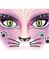 Carnavalskleding gezicht stickers kat vel roosendaal