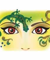 Carnavalskleding gezicht stickers salamander vel roosendaal