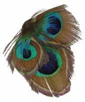 Carnavalskleding haarbloem pauwveertjes groen blauw roosendaal