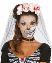 Carnavalskleding halloween horror tiara bloederige rozen sluier roosendaal