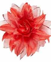 Carnavalskleding rode haarbloem glitters roosendaal