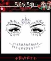 Carnavalskleding zilveren day of the dead sugar skull make up steentjes set roosendaal