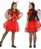 Dierencarnavalskleding lieveheersbeestje verkleed jurk jurkje meisjes roosendaal
